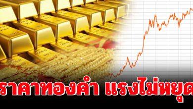 Photo of นักวิเคราะห์เผย ราคาทองคำ จะพุ่งไปจุดสูงสุด ฉุดไม่อยู่